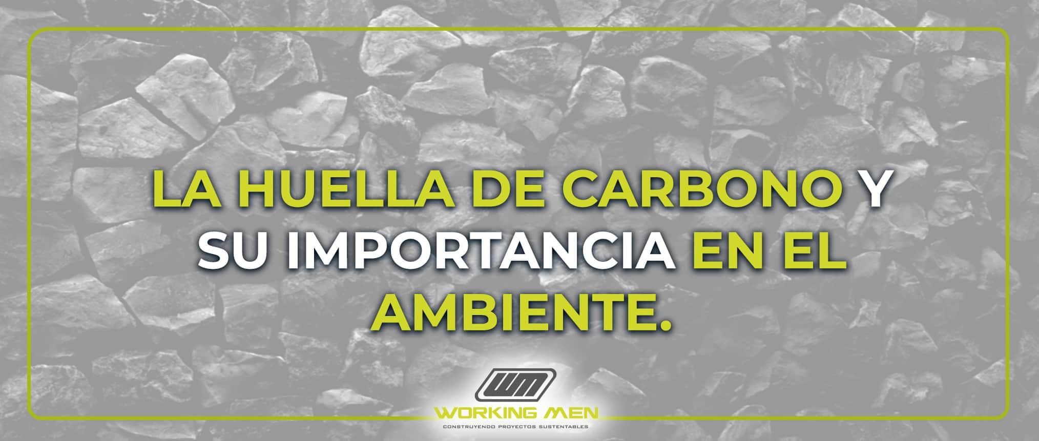 La huella de carbono y su importancia en el ambiente.
